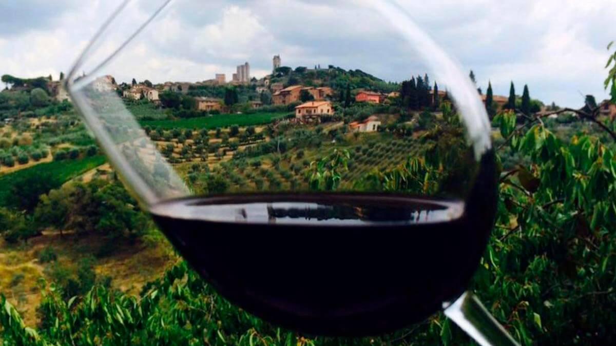 Дегустационная экскурсия «Вино, сыр и шафран» (фото 5)