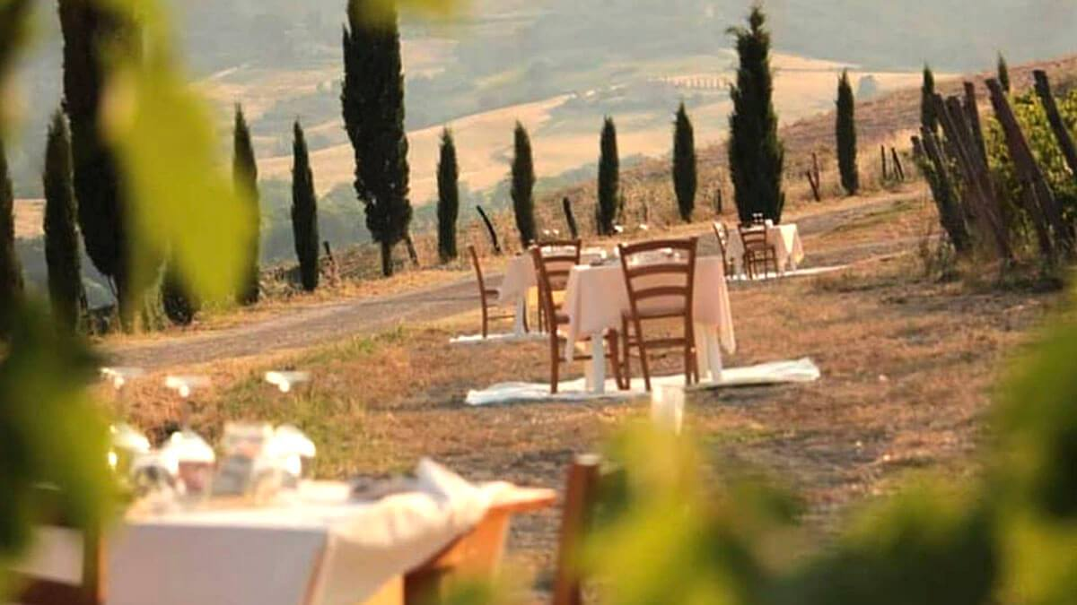 Дегустационная экскурсия: Пиза – земля Кьянти и Винсанто (фото 10)