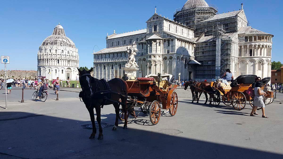 Экскурсия для круизных туристов из Ливорно в Пизу (фото 4)