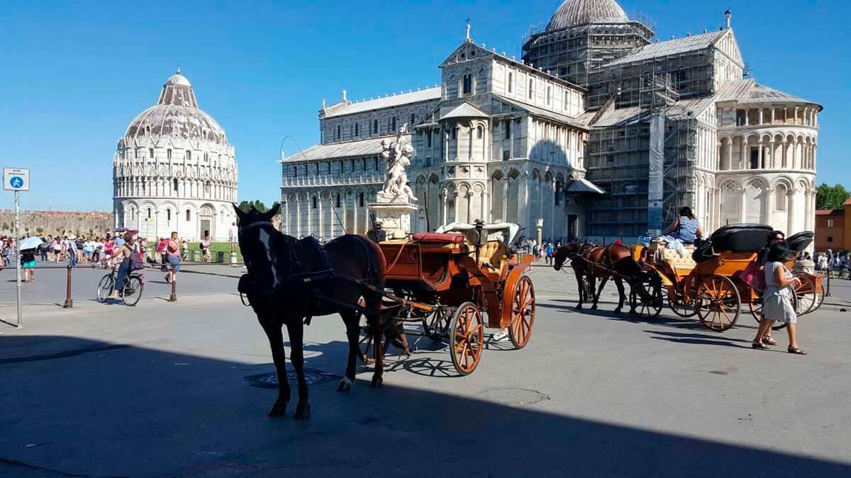 Экскурсия: Пиза и Лукка (фото 4)