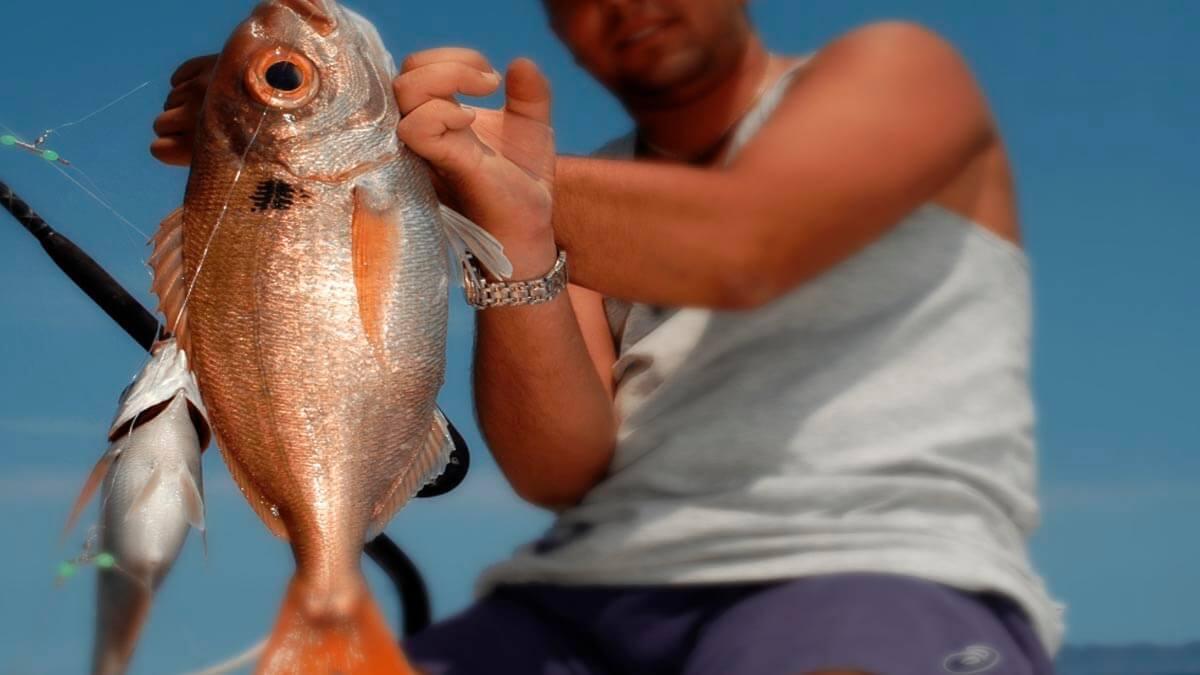 Морская рыбалка (фото 5)