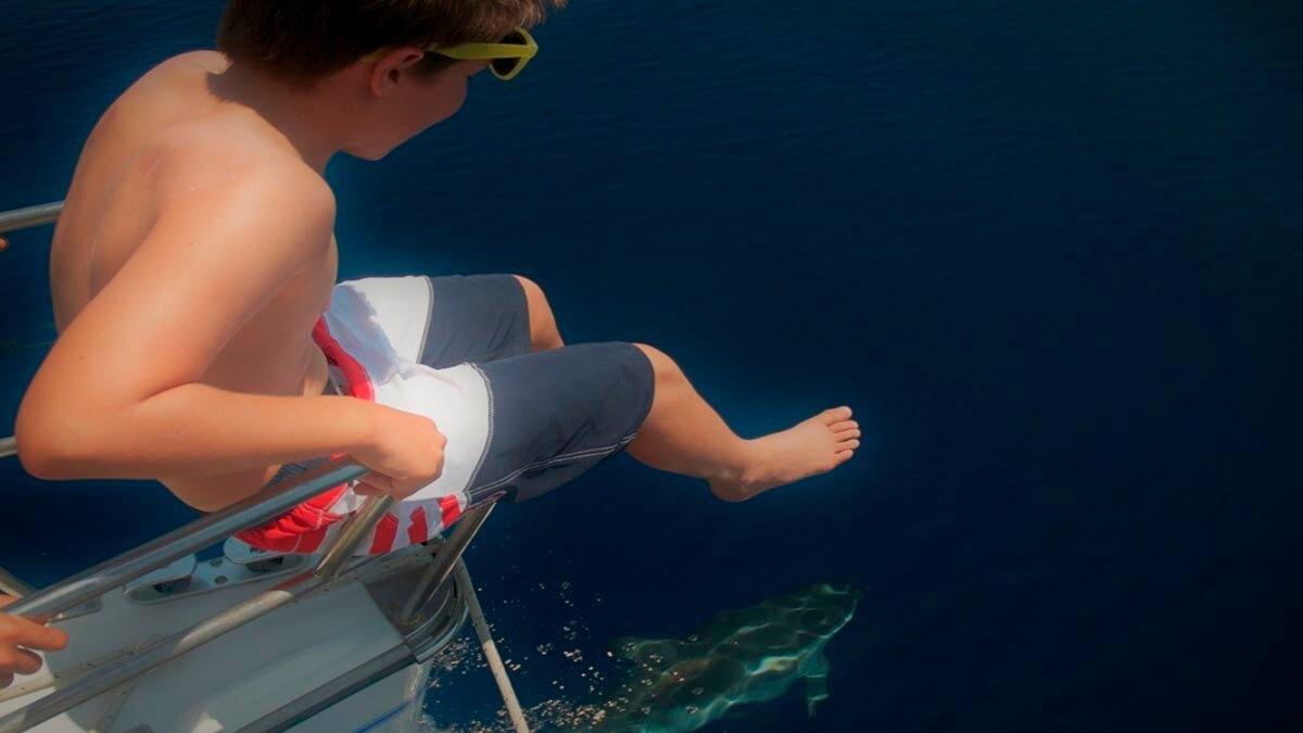 Экскурсия: Наблюдение за дельфинами (фото 10)