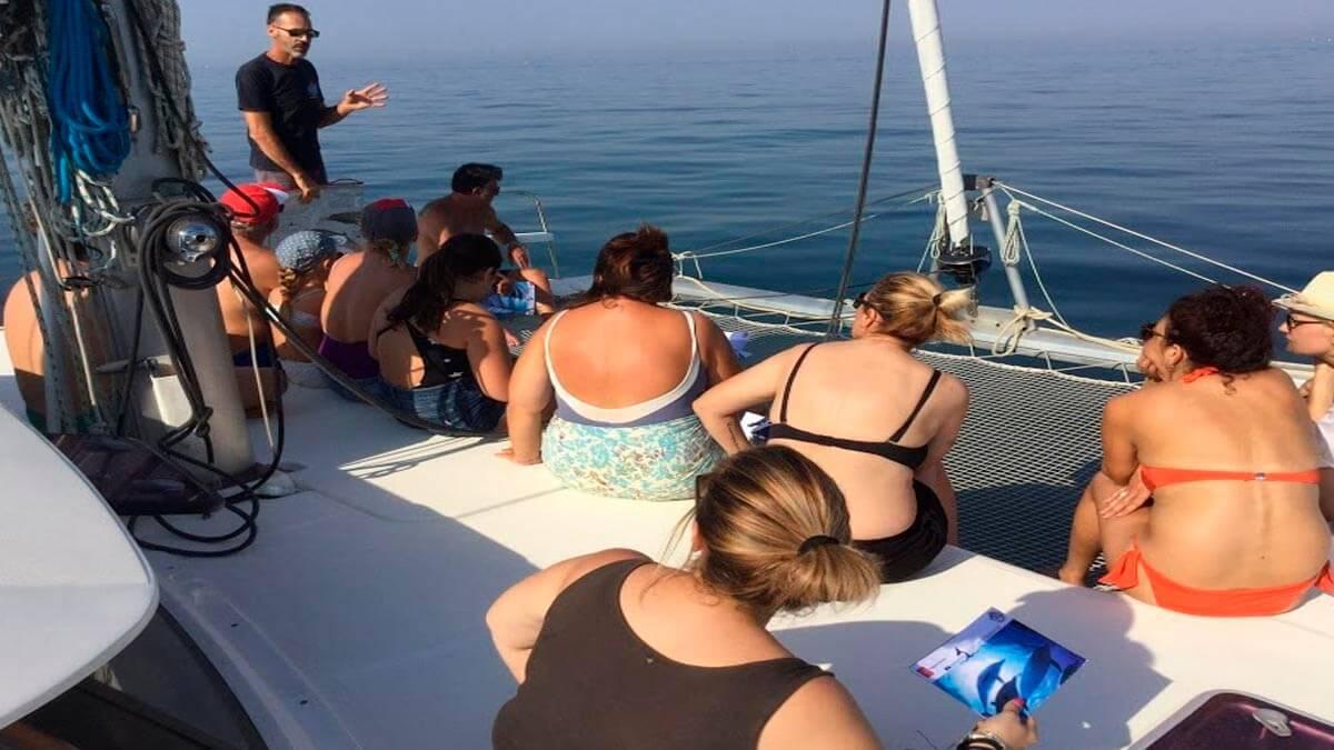 Экскурсия: Наблюдение за дельфинами (фото 6)