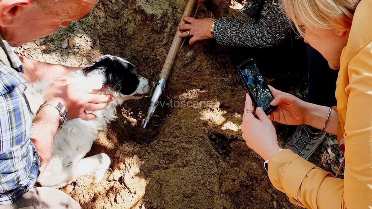 Трюфельная охота для детей и взрослых (фото 5)