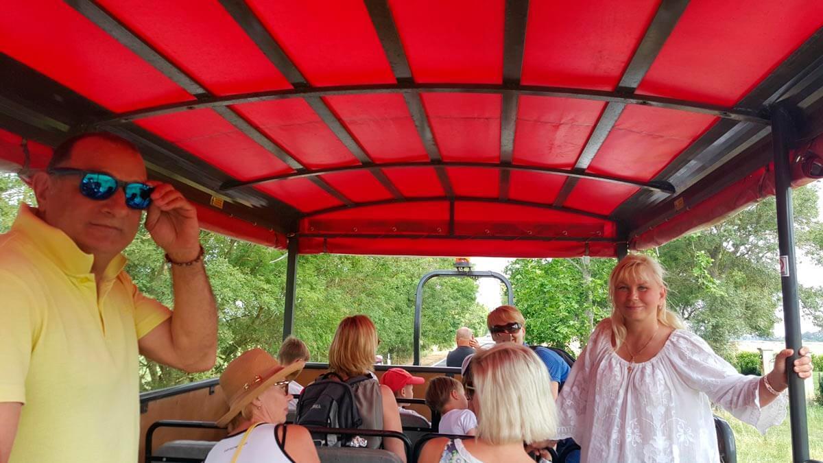 Экскурсия: Увлекательная ферма (фото 1)