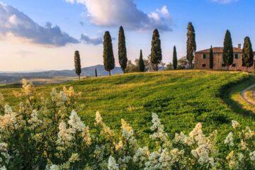Туры по Тоскане с гидом