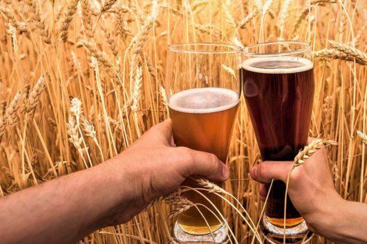 Дегустационная экскурсия: вино, пиво и сыры - гид Ирина Лихота