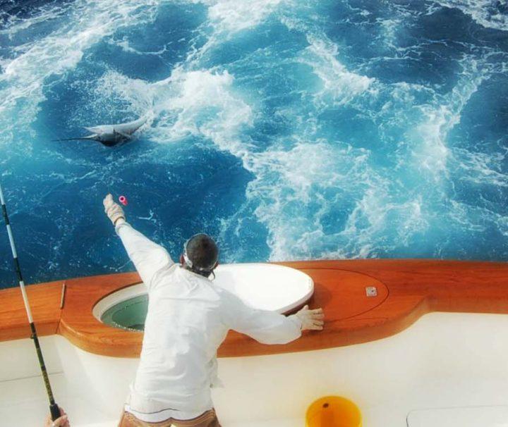 Морская рыбалка - экскурсии с гидом Ирина Лихота