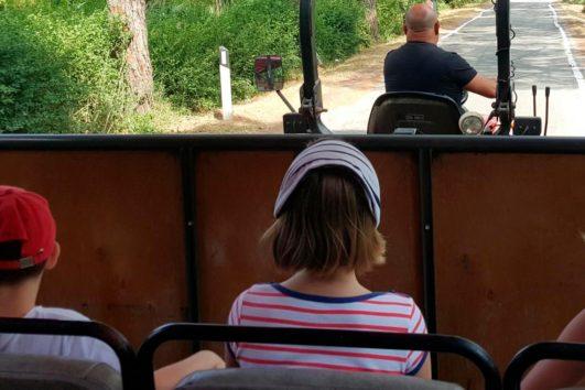 Увлекательная ферма - экскурсии с гидом Ирина Лихота