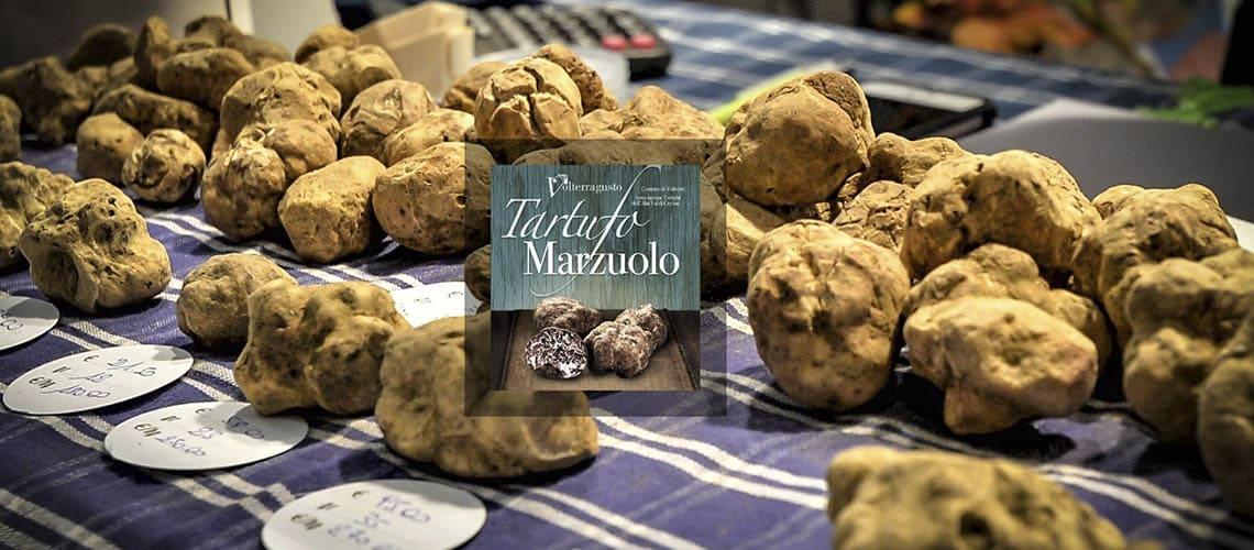Фестиваль мартовского трюфеля Марцуоло