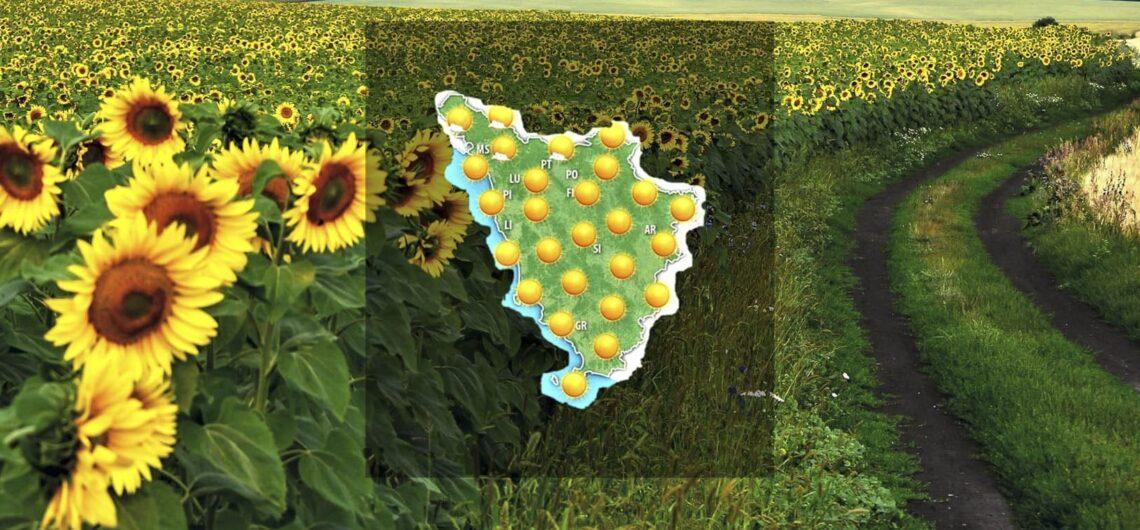 Событийный календарь - Тоскана: Август