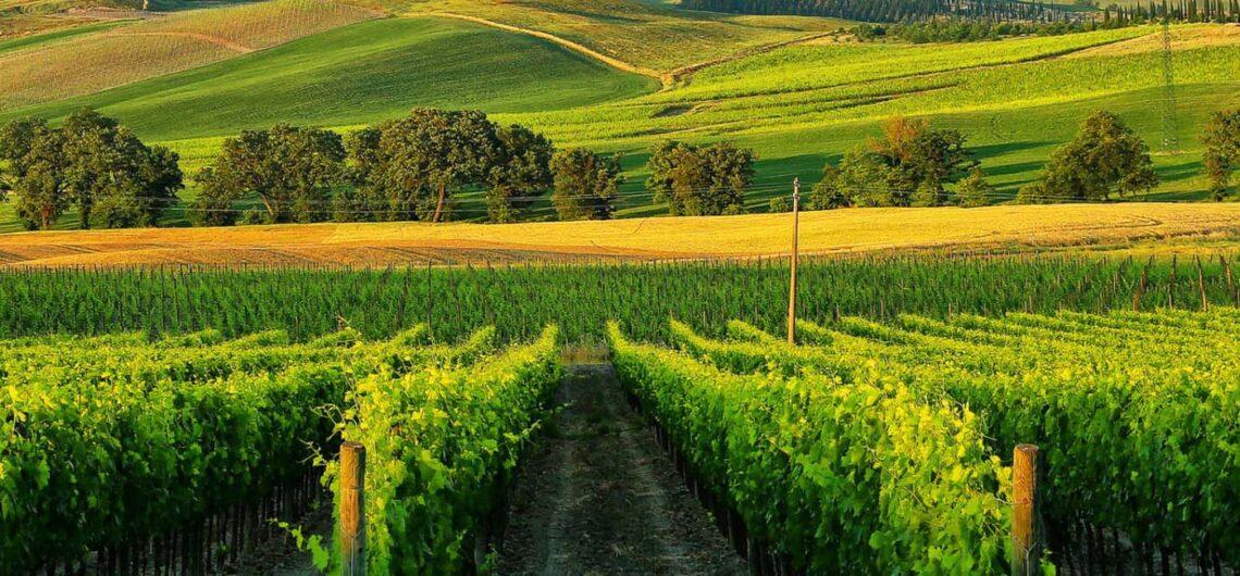 Винные дороги Тосканы, Италия