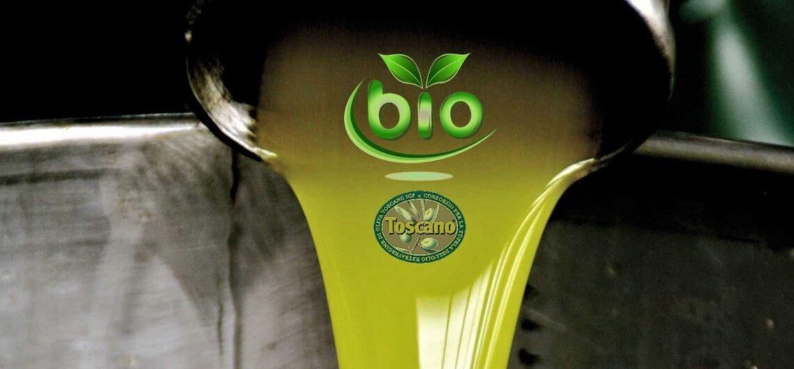 Оливковое масло – зелёное золото Тосканы. Гид Ирина Лихота