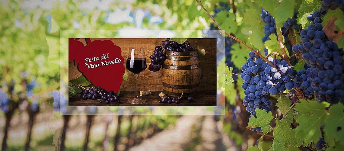 Винные фестивали молодого вина: Novello in festa